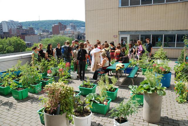 Offres d'emploi | Animation horticole, horticulture et gestion des matières résiduelles organiques