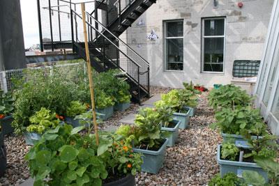 Atelier horticole – Planification globale d'un jardin