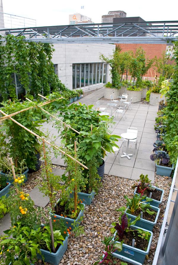 Jardin-terrasse | Pavillon DE