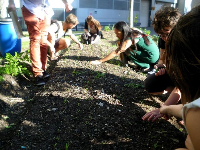 Fête d'ouverture des jardins du CRAPAUD vendredi le 5 juin!